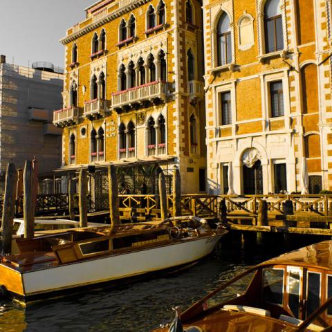 Venice (2011)